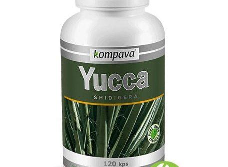 Kompava Yucca Shidigera: cena, možné účinky a skúsenosti
