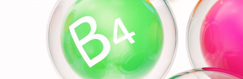 Vitamín B4: Jeho účinky a význam, ktoré potraviny sú najlepšie zdroje a jeho nedostatok