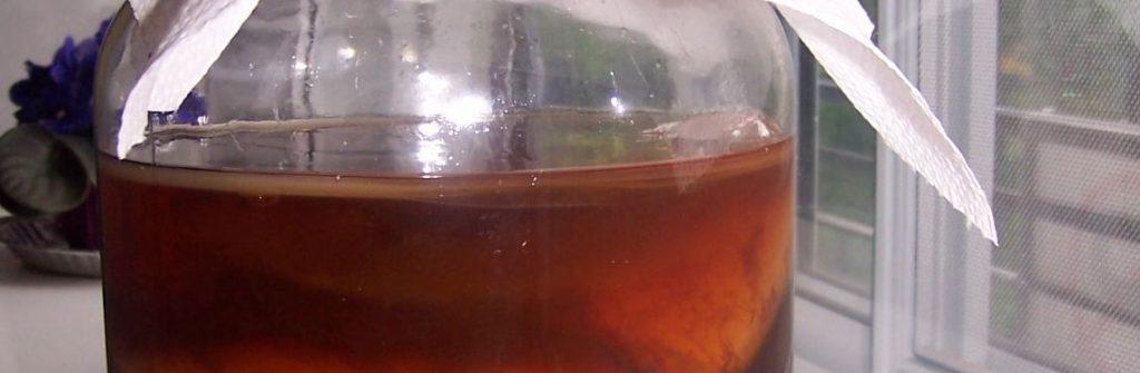 Čo je Kombucha, aké má účinky, na čo pomáha a kde kúpiť čaj či nápoj s jej obsahom