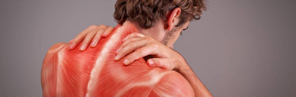 Čo znamená bolesť svalov na nohách, rukách, krku, chrbte, zadku alebo na celom tele?