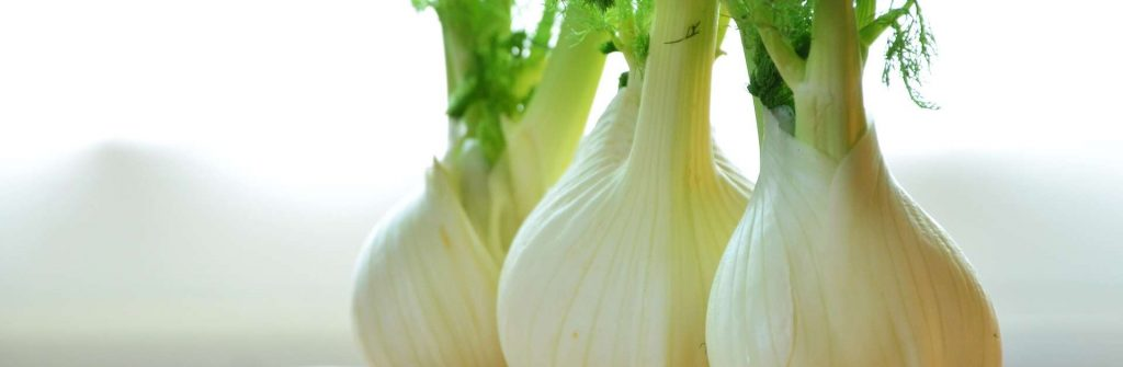 Fenikel: Použitie v kuchyni, na chudnutie aj trávenie a jeho liečivé a vedľajšie účinky