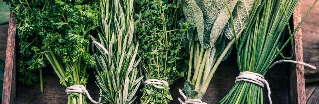 Aké bylinky na chudnutie sú najlepšie? Na podporu sú účinné čínske aj viaceré liečivé